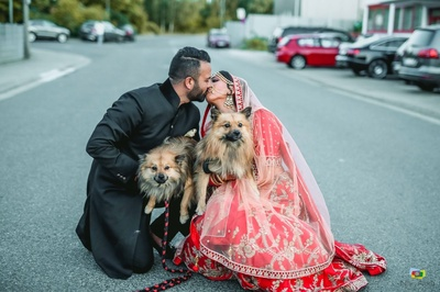 Bride and groom pose together with their dogs during their post wedding