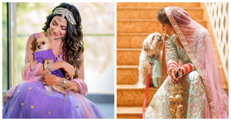 5 Brides with the Cute Dogs that stole our hearts