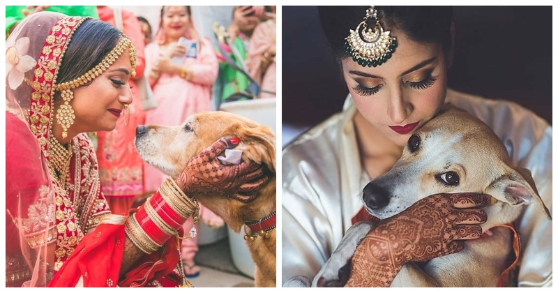In love with these brides who put their dogs first, husband second!