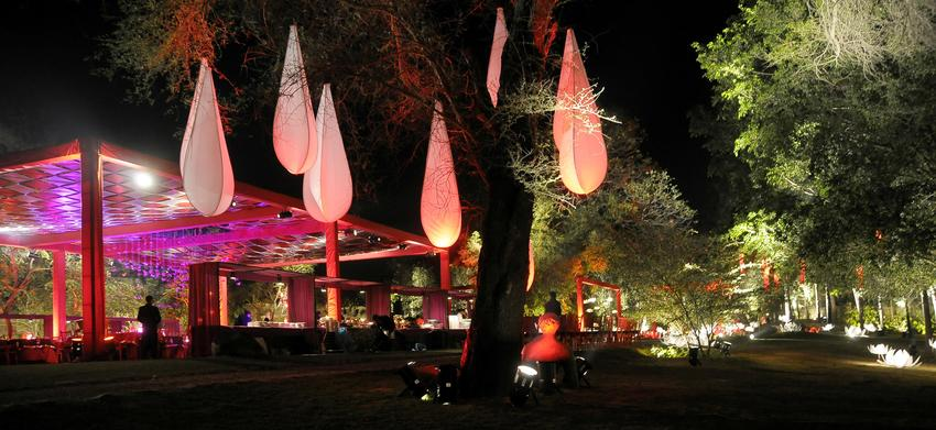 Synergia | Delhi | Wedding Planners