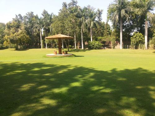 Aggarwal Farm, Chattarpur, Delhi