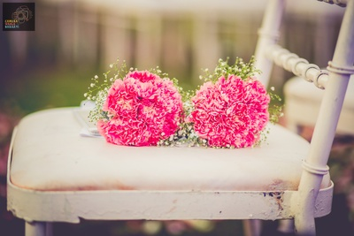 Pink carnations and baby breath flowers