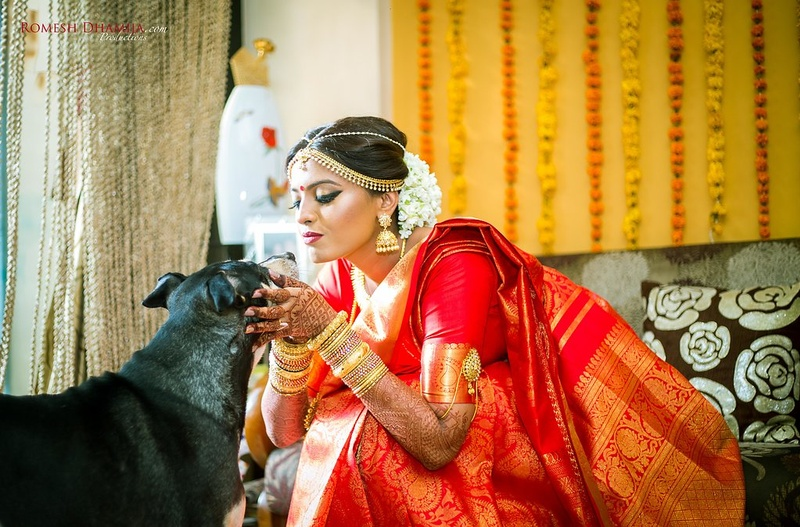 Bindu & Sonia Mumbai : Adorable dogs participate in traditional south indian wedding held in Thane