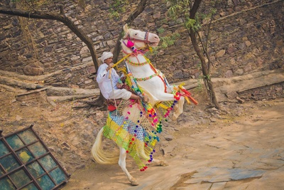 White enchanting horse decorated with ethnic vibrant strings and torans, is the groom's abode for the day