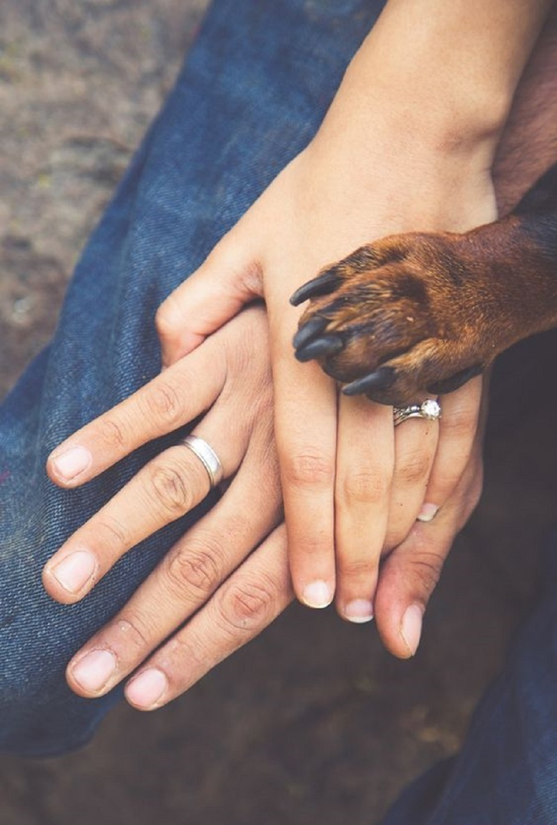 7.Announcing your engagement: