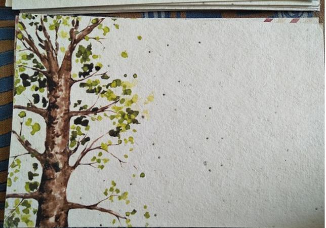 Wedding Plants | Chandigarh | Invitation Cards
