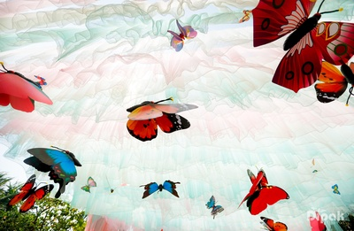 Large colourful butterflies, making the theme dreamy and delightful!