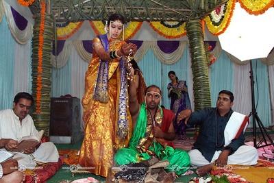 Gold shimmer silk saree featuring woven zari floral details