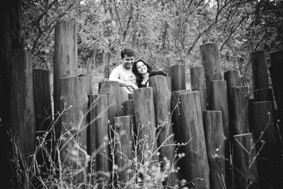 Wooden logs used as props for wedding shoot