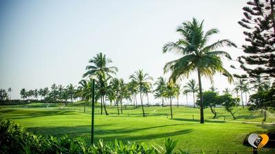 Lush green avenues at the Renaissance, Goa