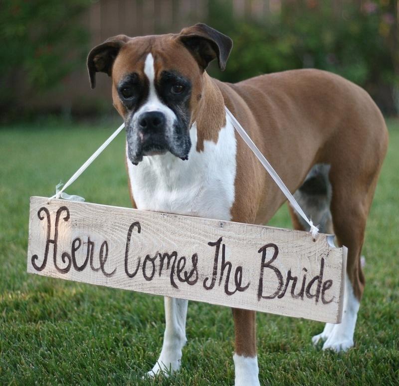 11. Here comes the bride: