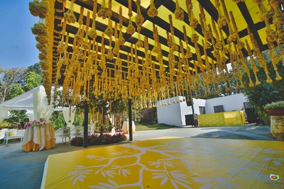 Marigold floral ceiling for the wedding function