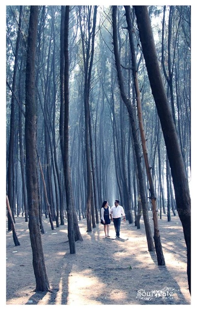 Pre-Wedding photoshoot by The Soulmate Diaries amidst pine trees