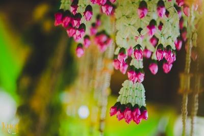 Sofitel decked in fresh flower decoration for the grand destination ceremony