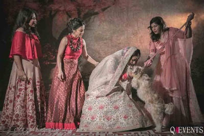 Bride and her bridesmaids pose with the pets for the photographer