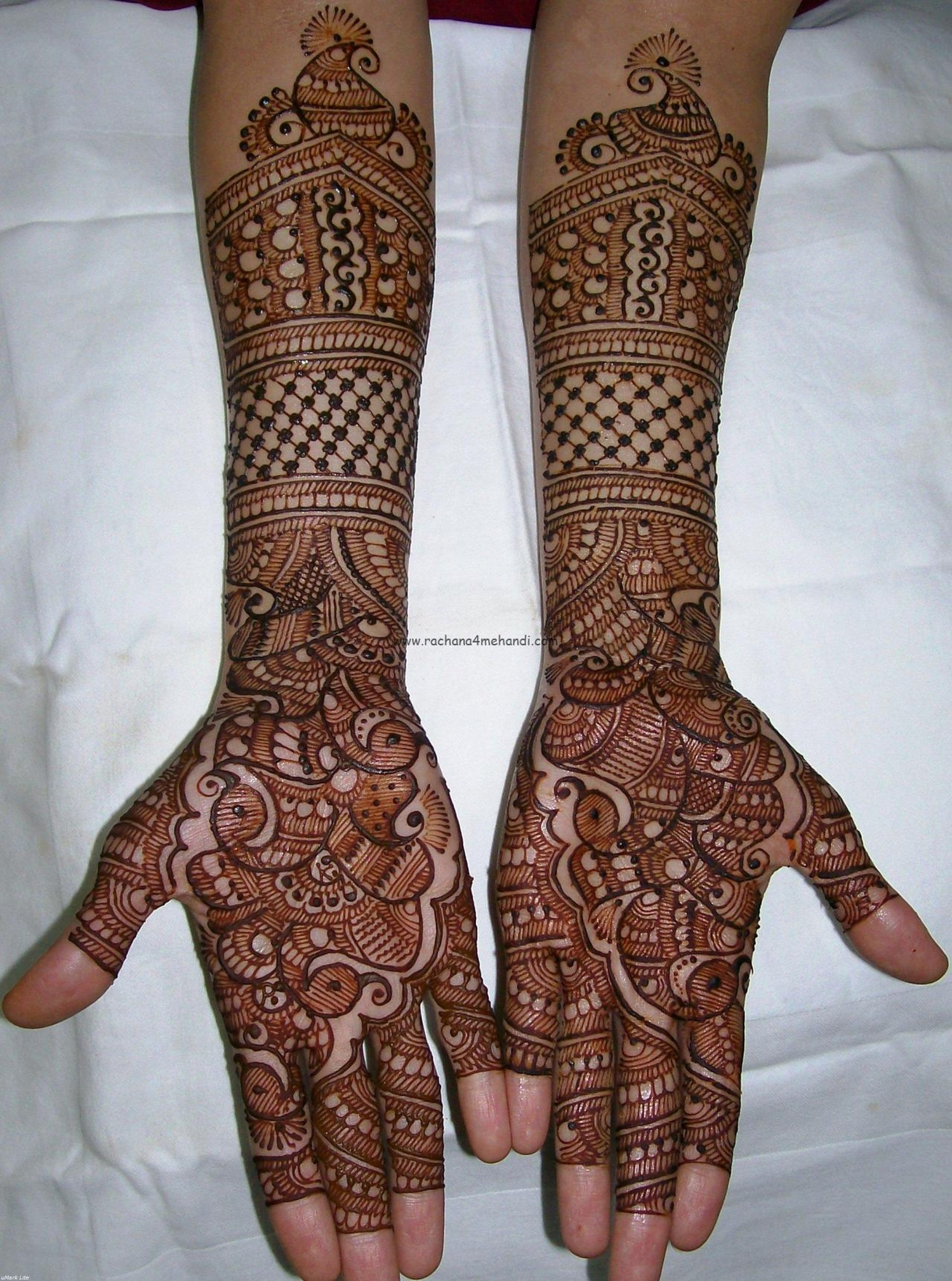 Bridal Mehndi Rates In Chennai : Henna artist prices makedes