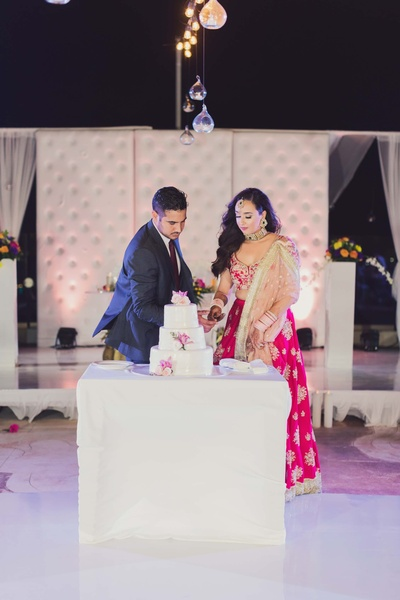 Bride and groom cutting the cake during their reception ceremony