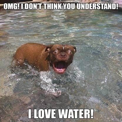 > WATERRRR.