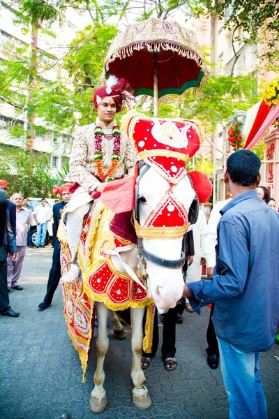 Groom being escorted on a decked white horse