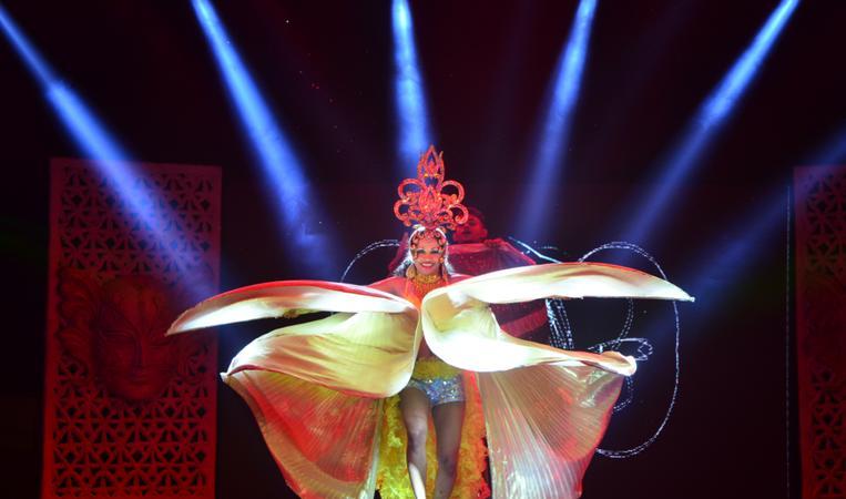 Sea Hawks Events Pvt. Ltd. | Delhi | Variety Arts