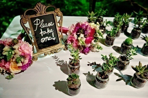 Let the Love Grow – Green Wedding Favours