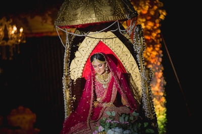 Royal Bridal entry on palanquin for the wedding