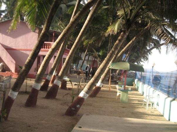 Whispering Palms Holiday Mira Bhayandar Mumbai - Wedding Lawn