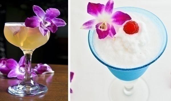 Cocktails/ Mocktails/ Food