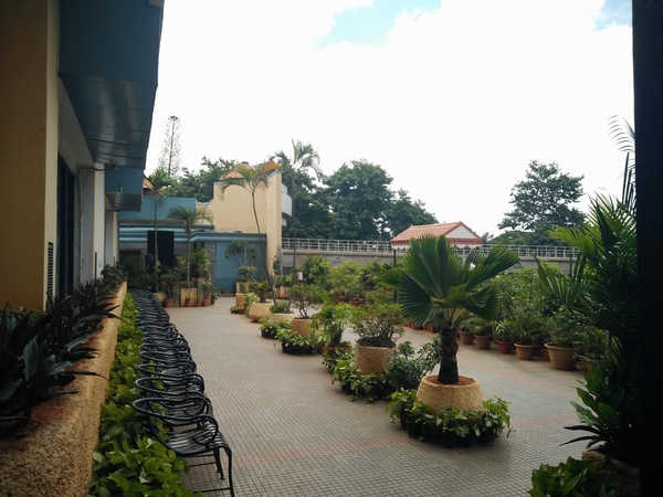 Canopy terrace garden m g road bangalore banquet hall for Terrace 6 indore address