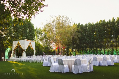 Outdoor chic wedding setup with white drapes, chivary chairs and minimal clustered floral arrangement