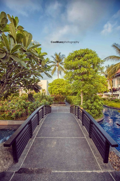 Wedding venue surrounded with lush green and pristine water at Thailand