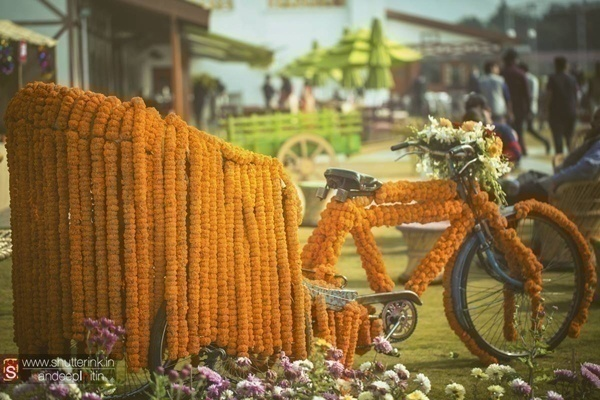 Genda Phool Bicycle Decoration