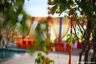 Outdoor wedding space adorned with Marigold strings