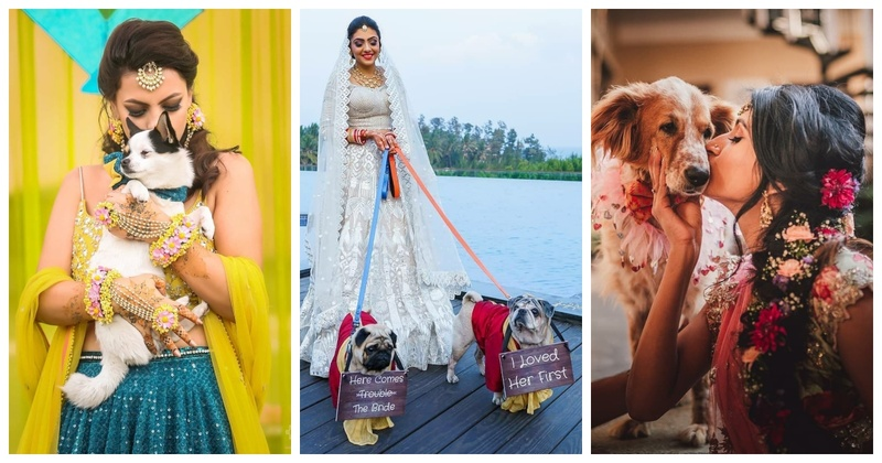 10 Brides who Stole our Hearts by Including their Doggos in their Wedding!