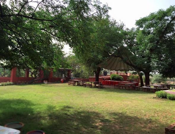 Golden Creepers Farm Retreat Sadrana Gurugram - Wedding Lawn