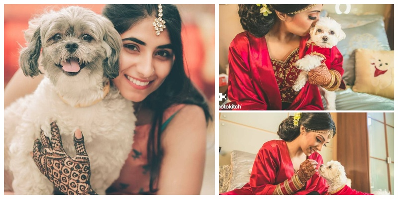 These pictures prove that your wedding pictures are better with your Furry BFFs in them!
