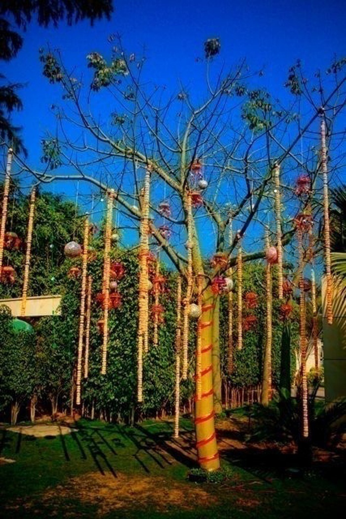 Deck Up a Barren Tree, Make It Feel Special Too - Outdoor Tree Hangings and Twirled Marigold Decor