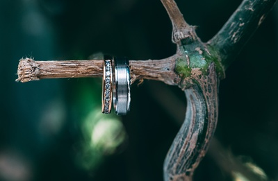Platinum band for him and a diamond studded wedding ring for her