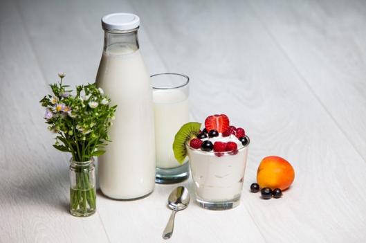Milk / Cheese / Yoghurt