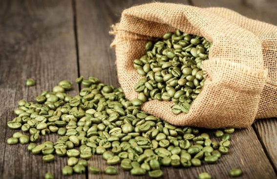 What is Green Coffee?
